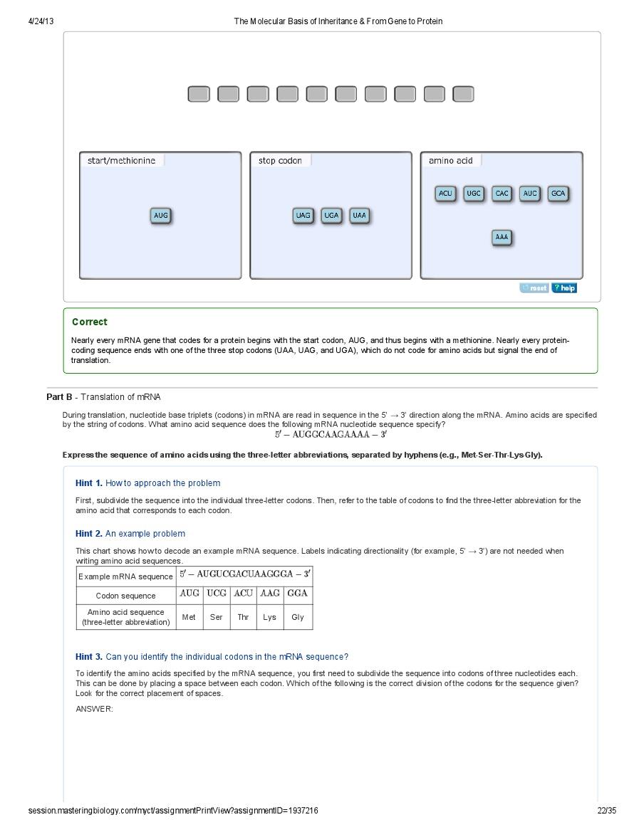 The Molecular Basis Of Inheritance Pdf Document